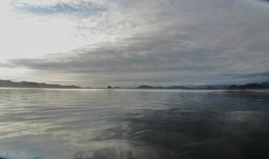 Sea Wolf Adventures - Day Tours: Kigncome  Inlet