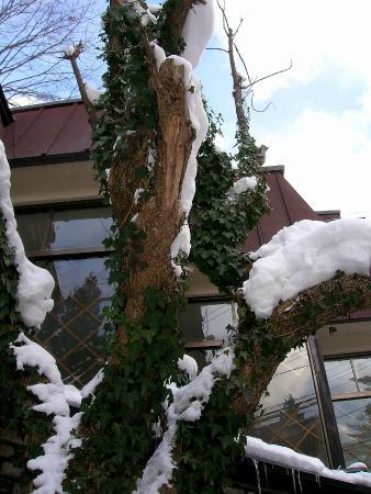 Hotel Mont Blanc Hakuba: Улочки Хакубы