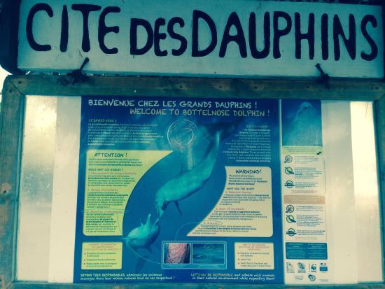 Vahaui Paradis : La cité des dauphins. Passe de Tiputa