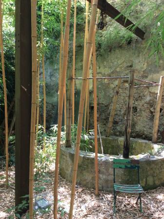 Le Jardin Les Bambous du Mandarin (Montauroux) : 2018 Ce qu'il faut savoir pour votre visite