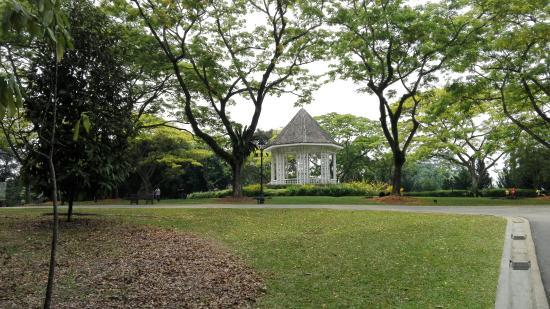 Orchidee fotograf a de jardines bot nicos de singapur for Jardin botanique singapour