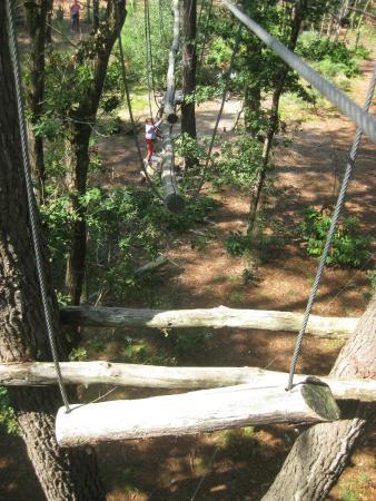 Monkey Forest: le parcours blanc