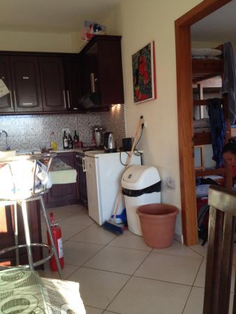 Hairy Lemon Hostel: The kitchen/dining area