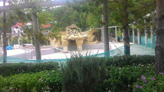 Blagodat Resort: Скоро будит басеен.