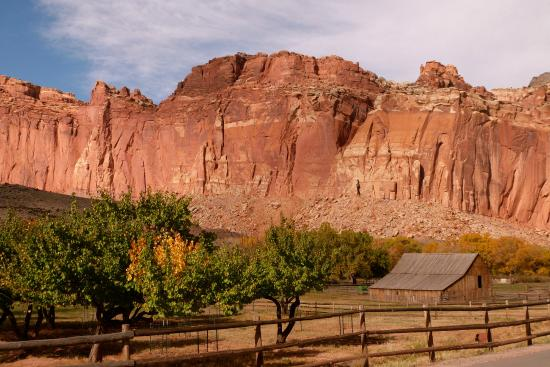views of the barn at the gifford homestead capitol reef np rh tripadvisor com