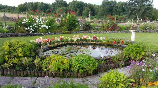 Marybank, UK: Grazioso b&b  nelle vicinanze di Inverness.  Il giardino è curatissimo,  le stanze piccole ma be