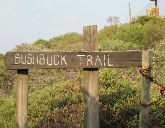 Knysna, Zuid-Afrika: Trail beginning