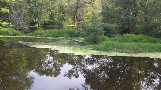 Inn On The River: along bike trail wildlife refuge south
