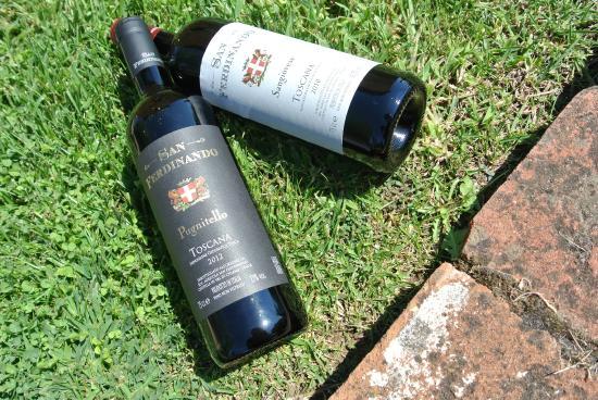 Ciggiano, Italie : Dettaglio di due vini