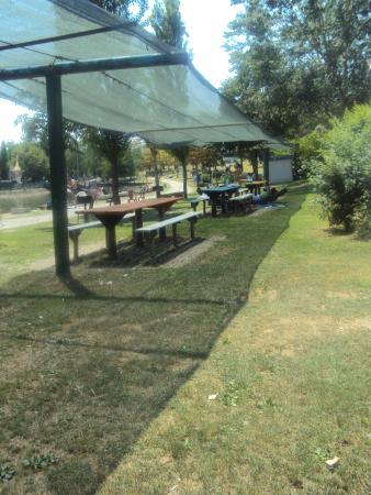Area Grigliate Foto Di Lago Parco Zoo Modena Tripadvisor