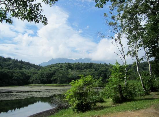 Nagano, Japan: 小鳥ヶ池
