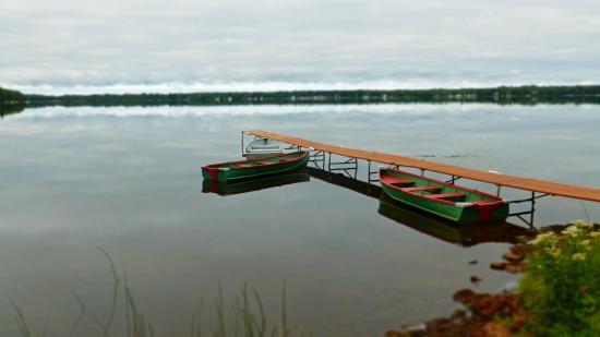 Trout Lake, MI