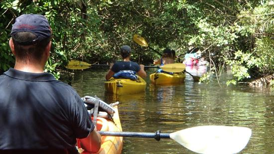 Kayaks & Stuff of the Treasure Coast: Rivière Sainte Lucie