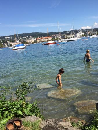 Lake Zurich: Summer at the lake