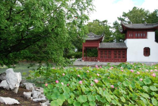 Jardim bot nico de montr al picture of montreal for Jardin quebec