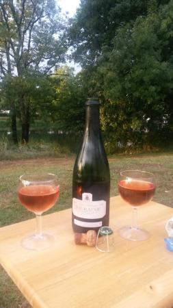 Francueil, Γαλλία: Relaxing with the local wine