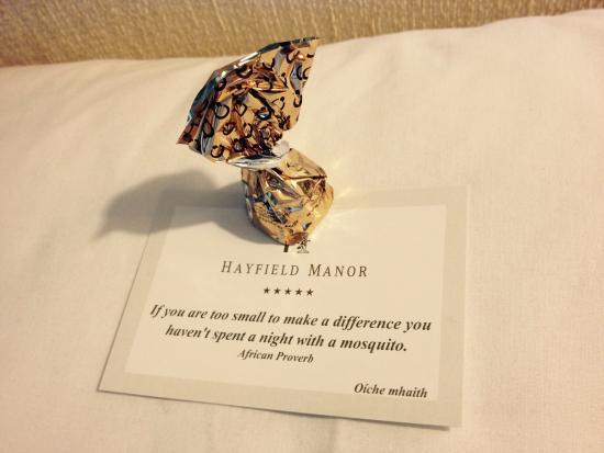 Hayfield Manor Hotel: photo6.jpg