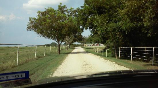 Burton, TX: Main drive 5