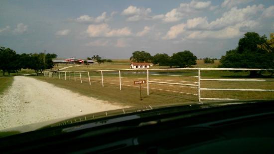 Burton, TX: Main drive 2