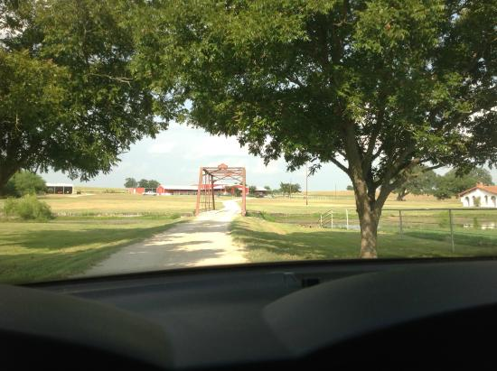 Burton, TX: The main drive to the tasting room