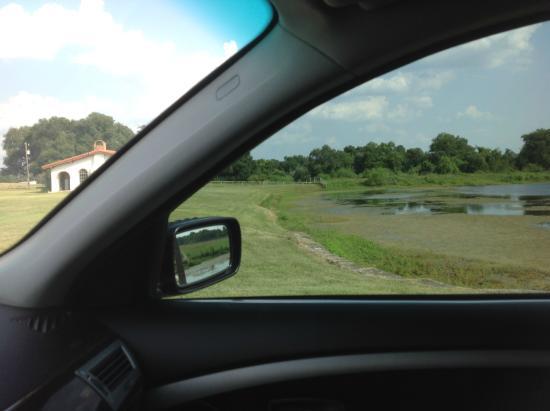 Burton, TX: Main drive 4