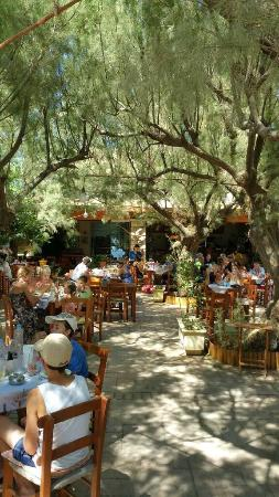 Damnoni Taverna: photo0.jpg