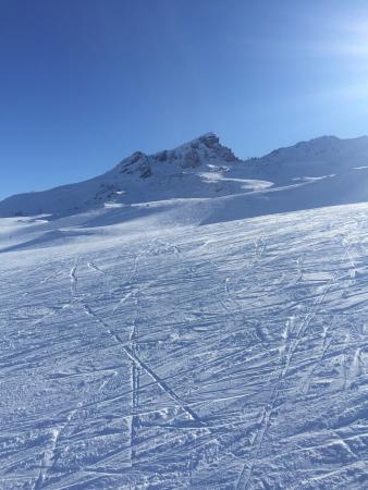 Cerro Castor (Castor Mount): Excelente centro muy buena nieve y la buena onda de la gente que atiende en el cerro. Excelentes