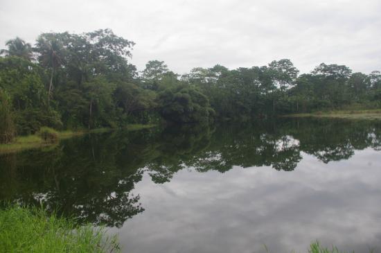 Camarona Caribbean Lodge: Río Estero Negro, una de las atracciones de camino al hotel.