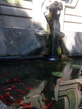 Aquarium de Milan - Picture of Acquario civico, Milan - TripAdvisor