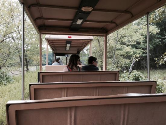 National Wildlife Visitor Center: Take a free 30 minute tram ride around the grounds. Very fun!