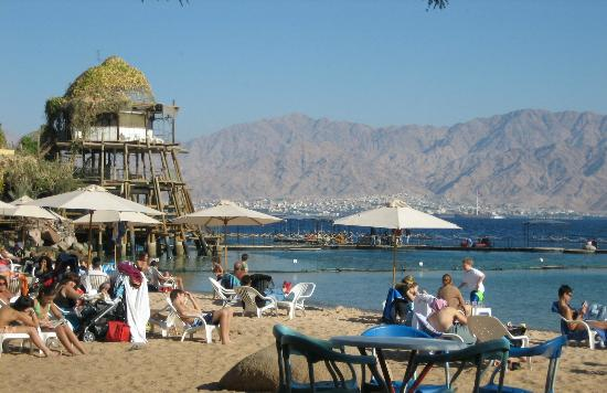 Dolphin Reef Beach in Eilat Picture of Dolphin Reef Eilat