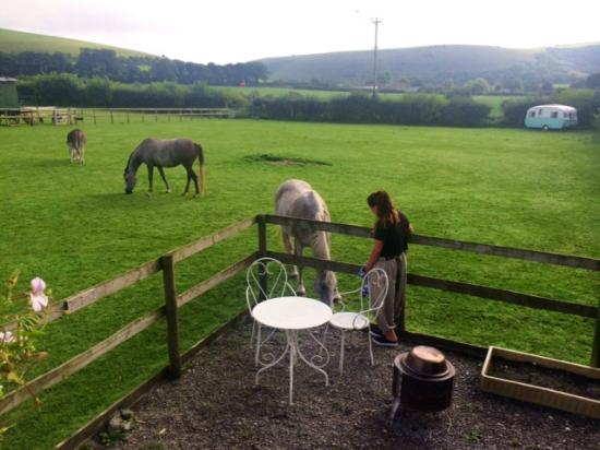 The Old Forge: View from Rosie the Gypsy Caravan