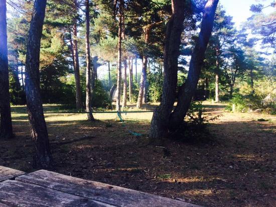 Eco Camping du Larzac - Picture of Eco-camping du Larzac, Millau ...