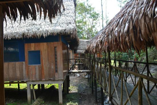 Amazonas Sinchicuy Lodge: MUYUNA Lodge