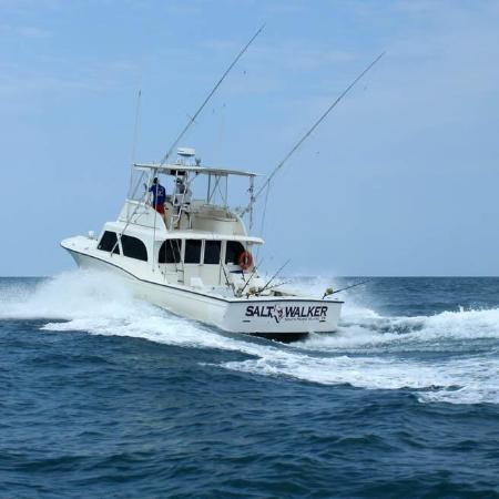 Salt Walker Fishing Charters