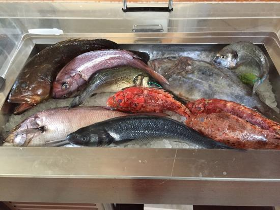 Castiglion Fiorentino, Italia: Il pescato