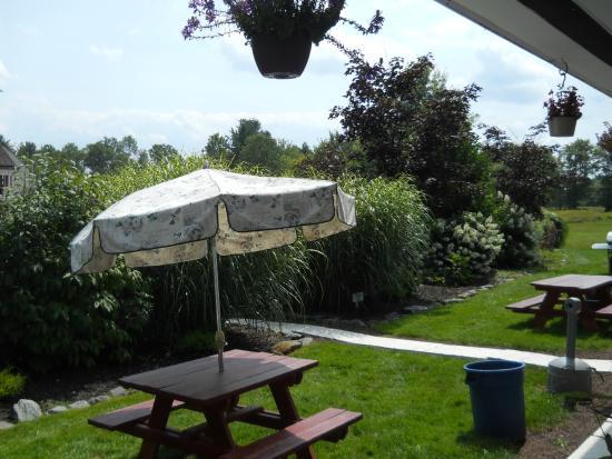 Cochecton, Nowy Jork: The garden area.