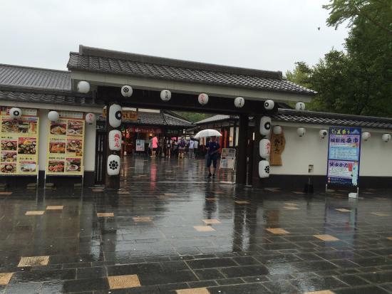 Sakuranobaba Johsaien: photo0.jpg