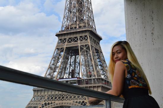 Pullman Paris Tour Eiffel View Of The Balcony