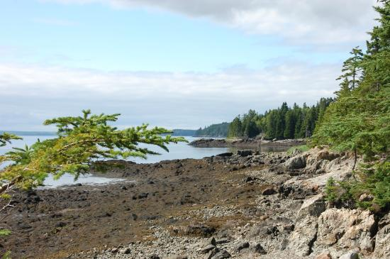 Deer Island Point Park Campground: View from the shore