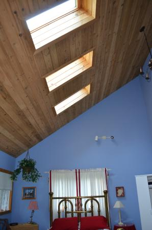 Candlewycke Inn B&B: loved the skylights which made the room very light