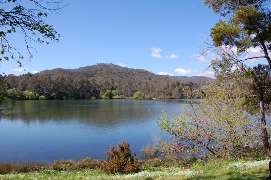 Eildon Pondage Holiday Park