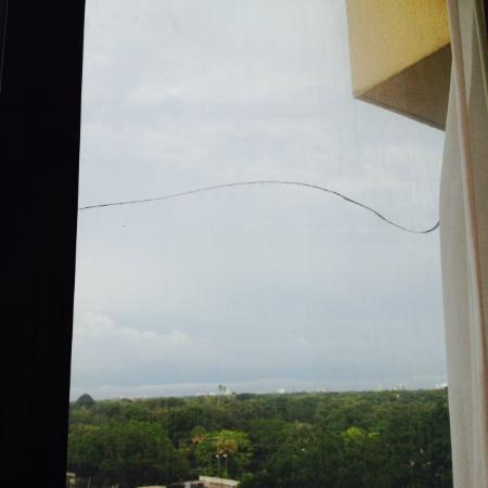Embassy Suites by Hilton Tampa - Airport/Westshore: Cracked window
