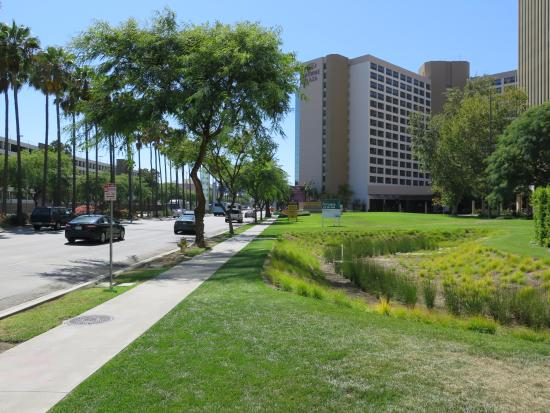 gardens near crowne plaza lax picture of crowne plaza. Black Bedroom Furniture Sets. Home Design Ideas