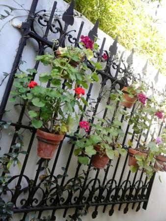 Croque Madame Museo Larreta: Patio Español En El Jardin