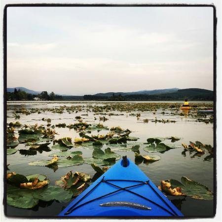 Silverlake, WA: Kayak View