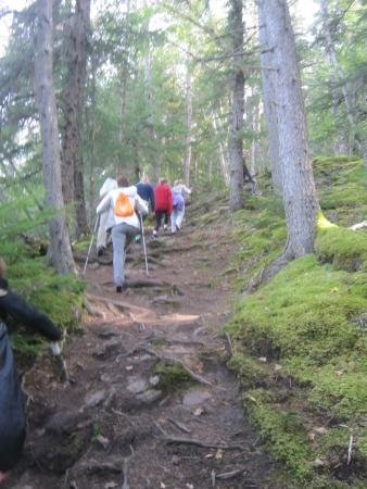 Skagway Float Tours: hiking the Chilkoot Trail