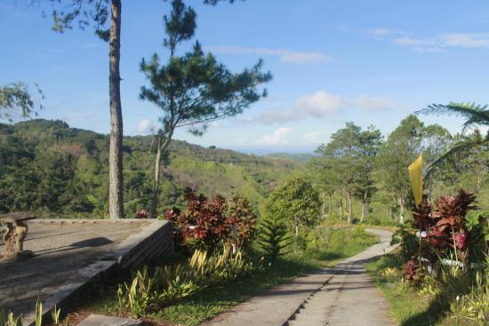 Seagull Mountain Resort: walk way to the cross