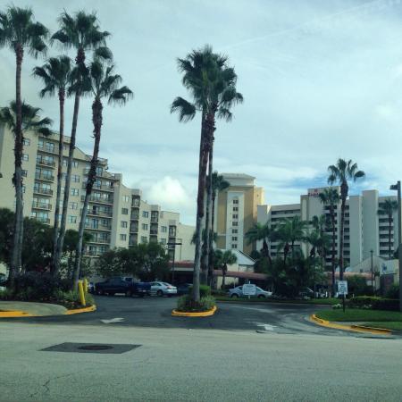 International Drive: Cada lugarzinho é apaixonante!🔝🇺🇸 Internatinal Drive🇺🇸🔝
