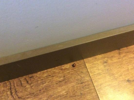 Palliser Lodge: dirty floor